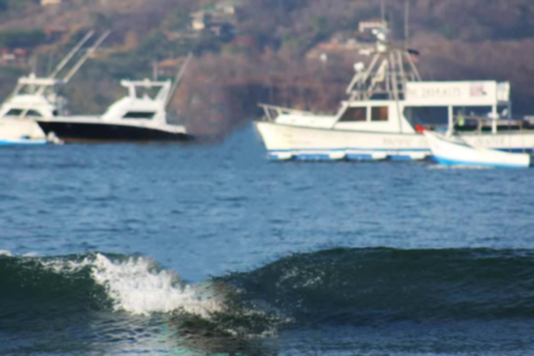 Educarte_surf